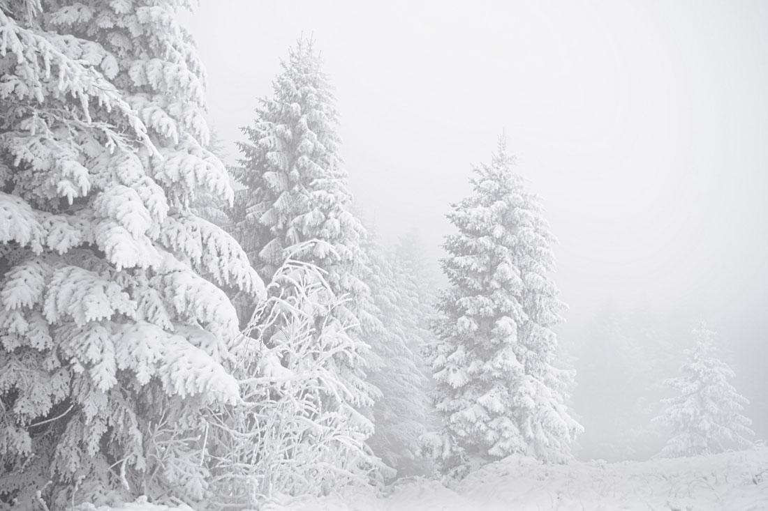 Fotografia śniegu