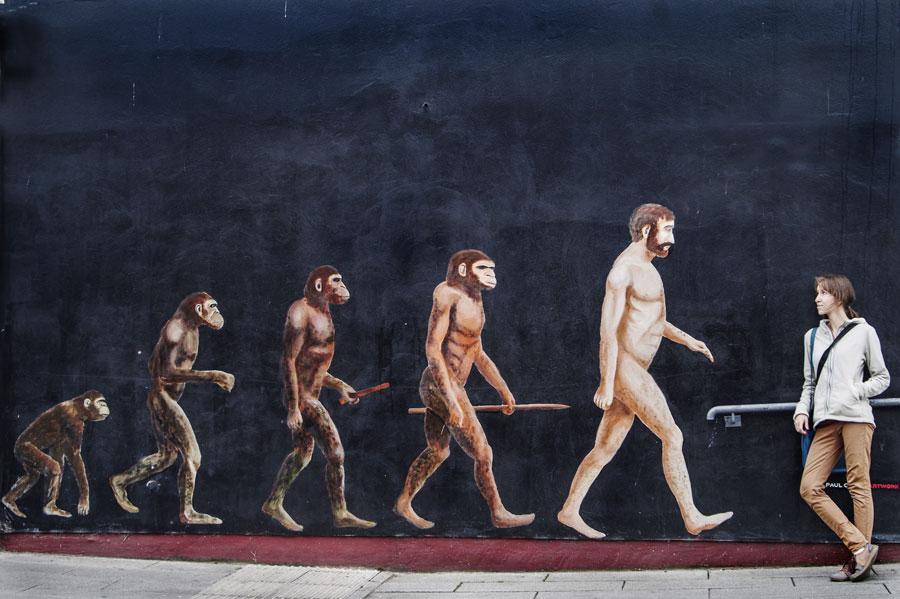 ewolucja człowieka od małpy