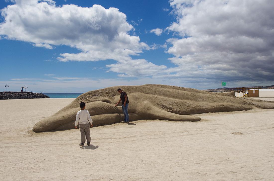 Fuerteventura - delfin z piasku na plaży Puerto del Rosario