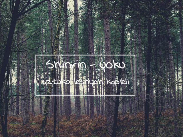 shirin-yoku, czyli sztuka leśnych kapieli